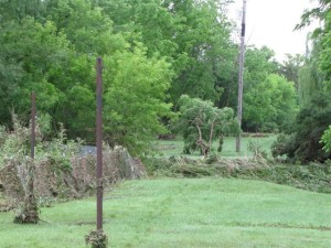 Damage to Rest of Park